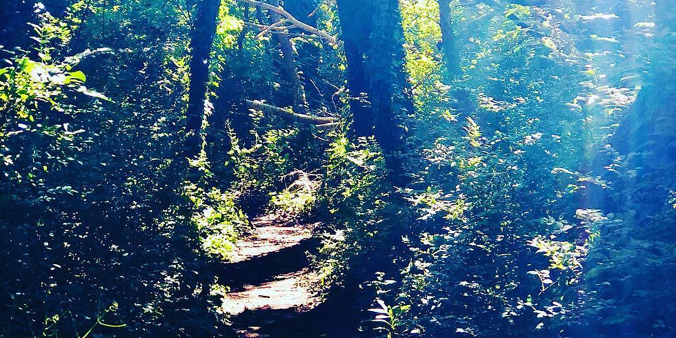 Yoga Hike at Jakes Branch /w Dawn
