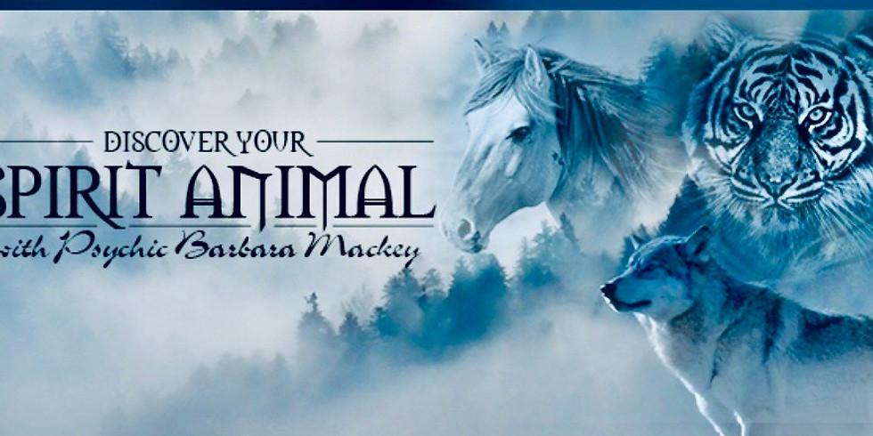 Discover your spirit animal ? /w Barbara Mackey