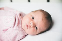 newbornfotografie helmond