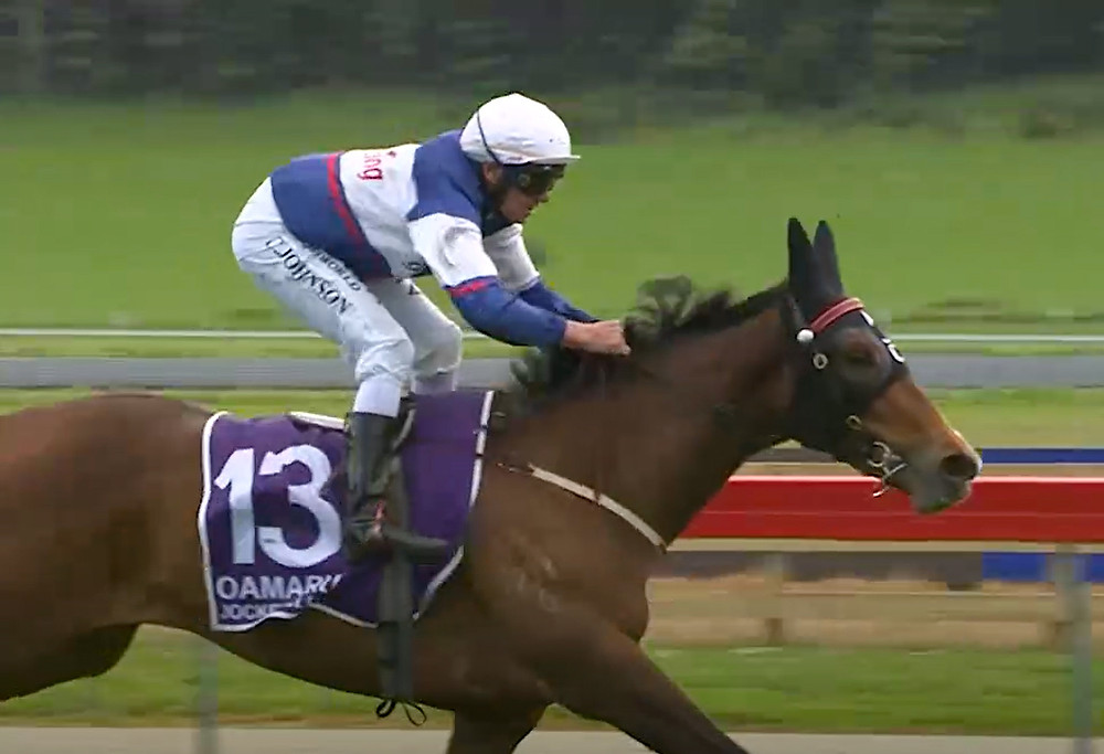 Sancitfy winning at Oamaru on Wednesday