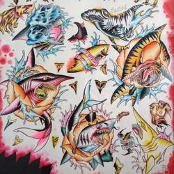Shark Week Art Work