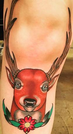 Dainty Deer