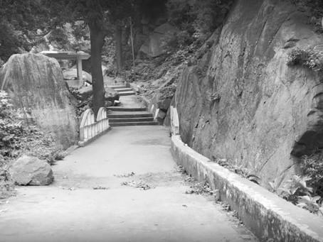 Trip to PunyaGiri Waterfalls