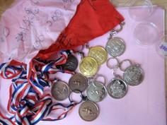 我由小學到中學的田徑運動獎項