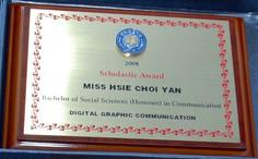 2008年學術成就獎