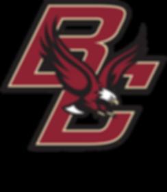 BRFC Logo Transparent Background.png