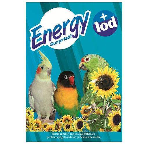 Energy Полнорационный сухой корм для волнистых попугаев