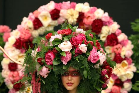 Autumn RHS Chelsea Flower Show.