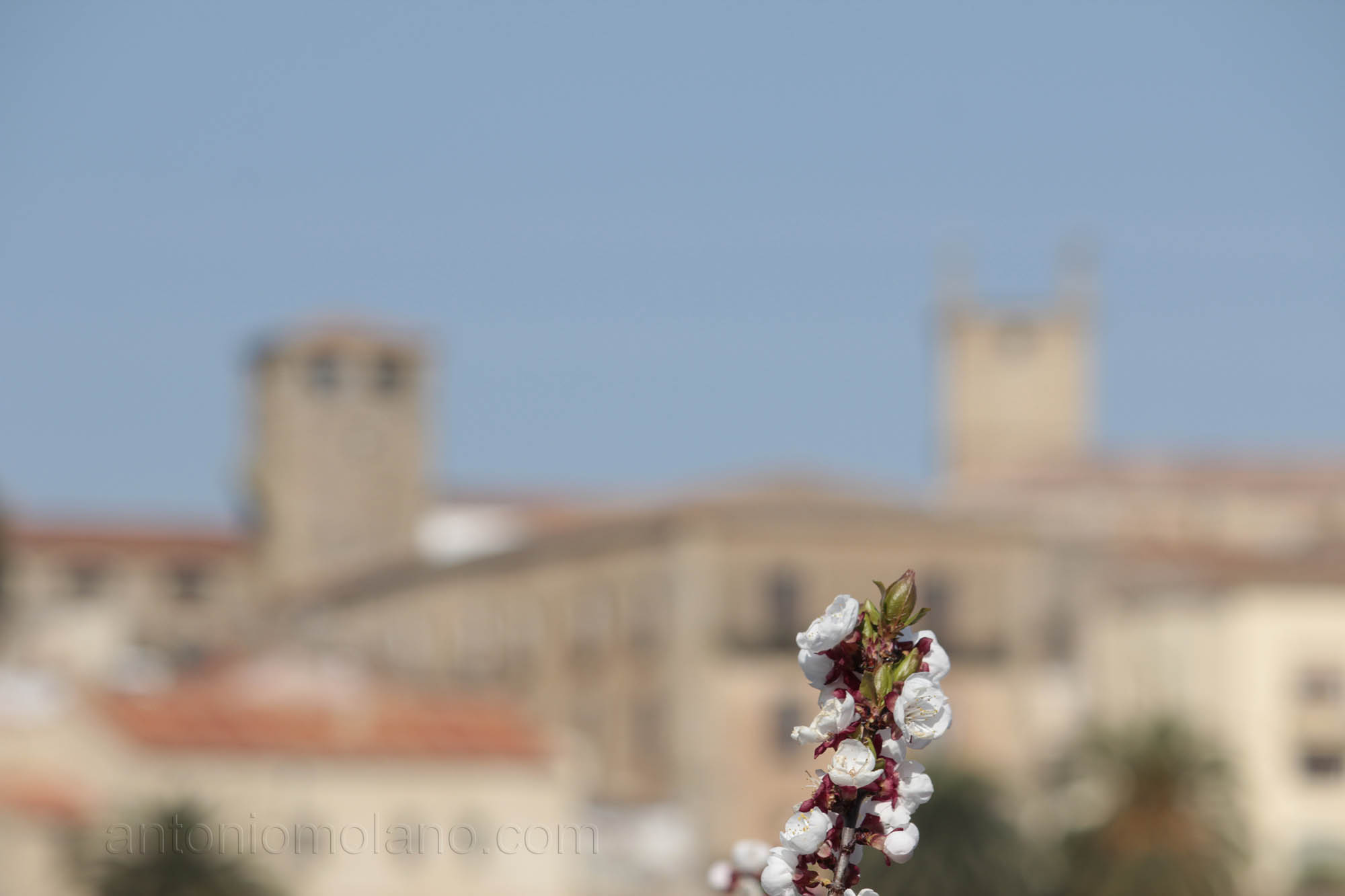 Cáceres en primavera.jpg