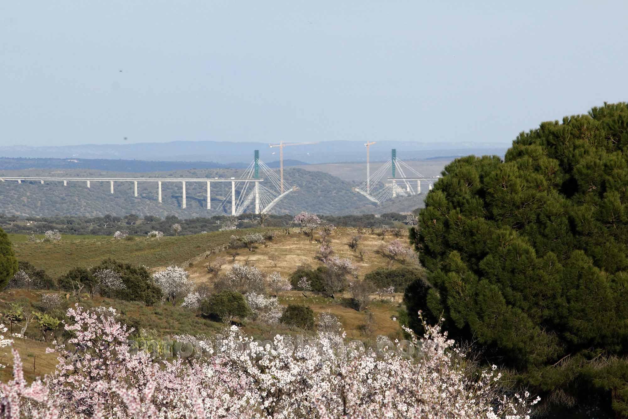 Puente del Ave con almendros