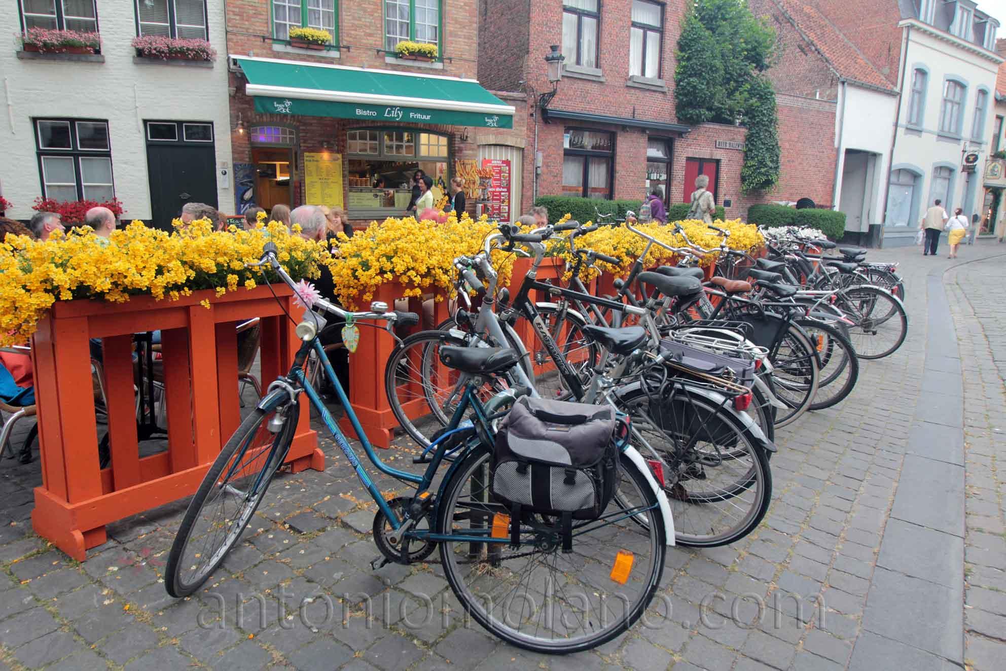 Bicicletas - Brujas.jpg
