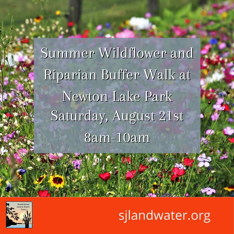 Summer Wildflower and Riparian Buffer Walk at Newton Lake Park