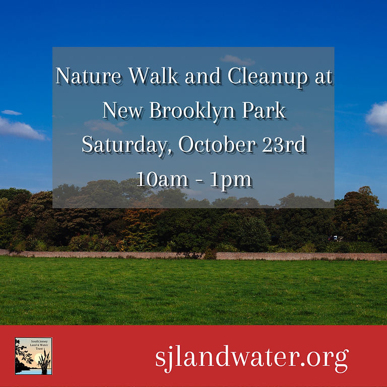 Nature Walk and Cleanup at New Brooklyn Park