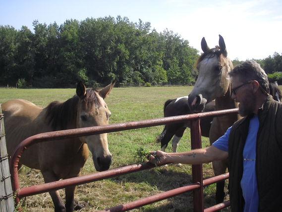 William and horses.JPG