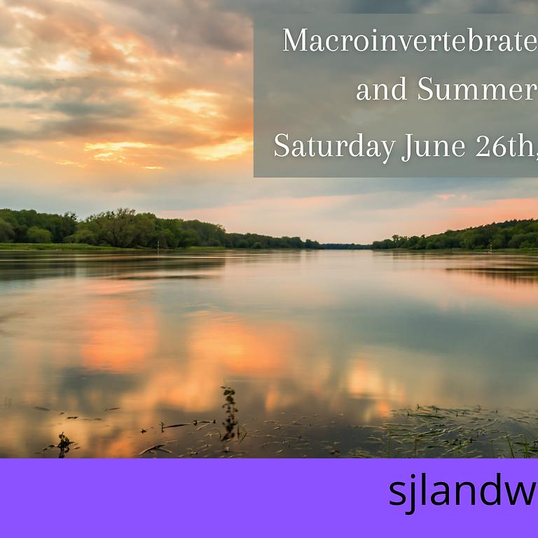Macroinvertebrate Workshop and Summer Walk