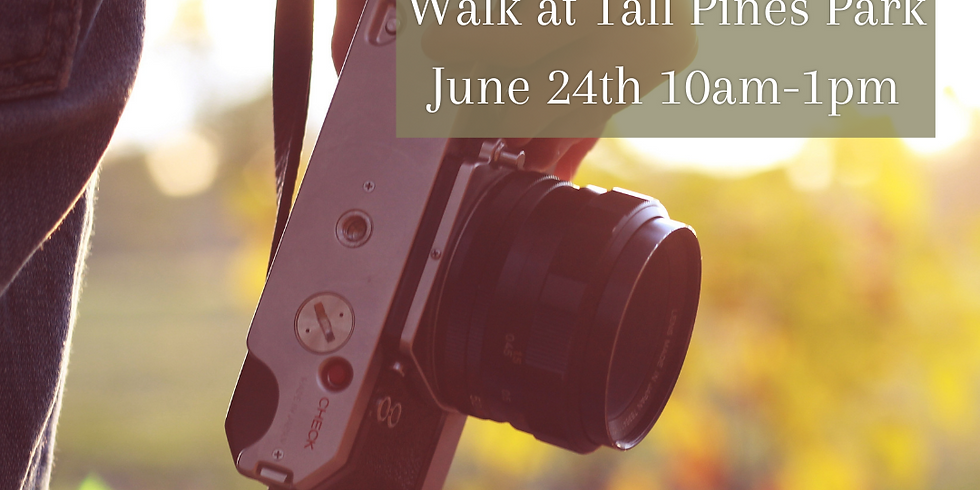 Sunset Photography Walk at Tall Pines Park