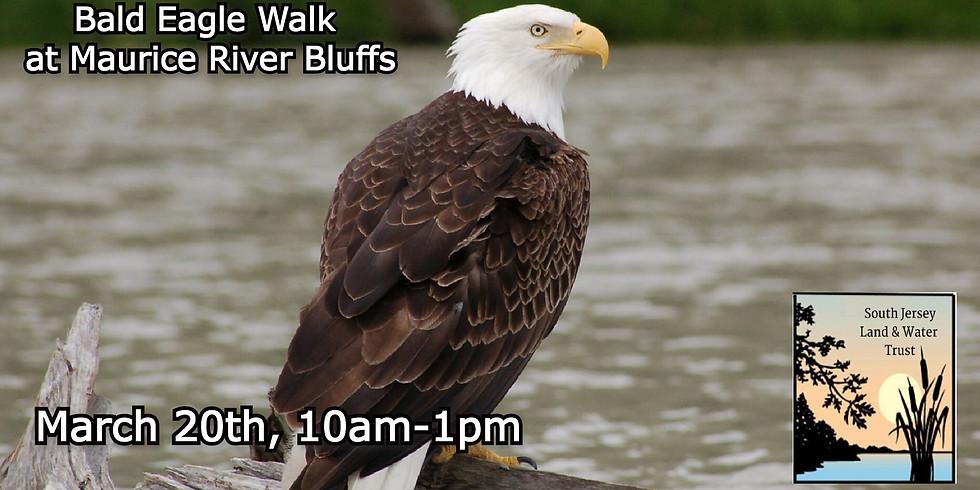 Bald Eagle Walk