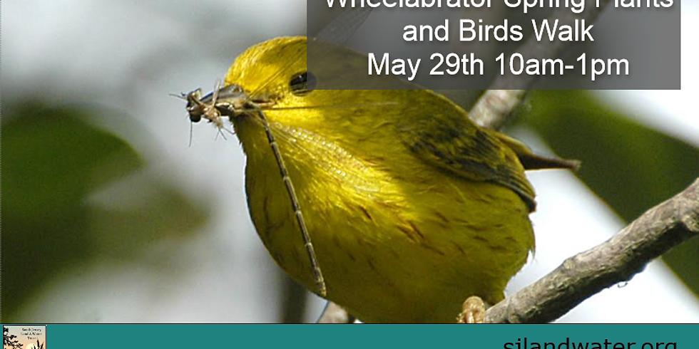 Wheelabrator Spring Plants and Birds Walk
