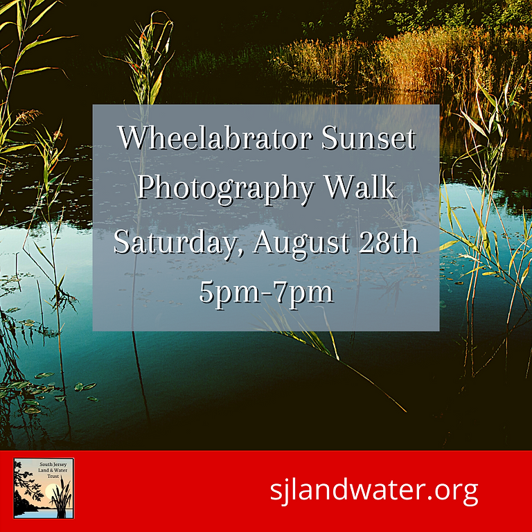 Wheelabrator Sunset Photography Walk to the Delaware