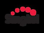 singtel-logo.png