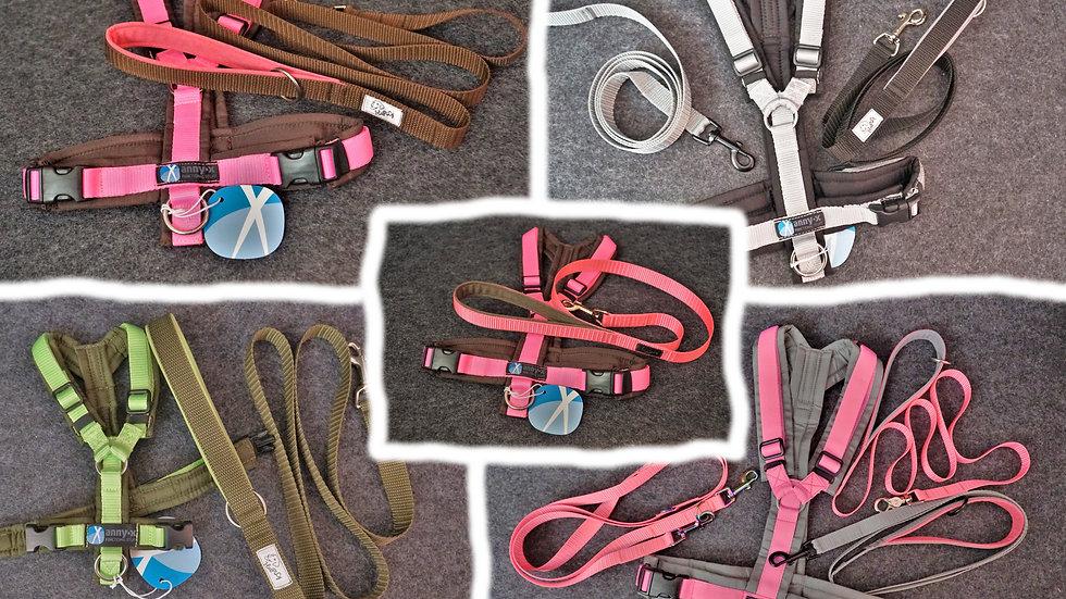 Gurtband-Halsband zu AnnyX