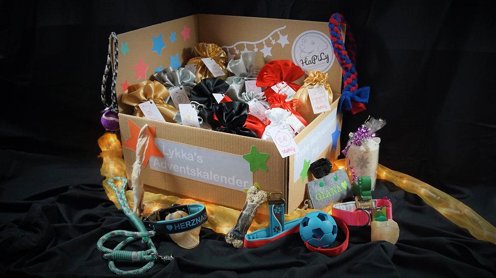 Hunde Adventskalender Überraschungen für jeden Tag Spielzeug HaPiLy