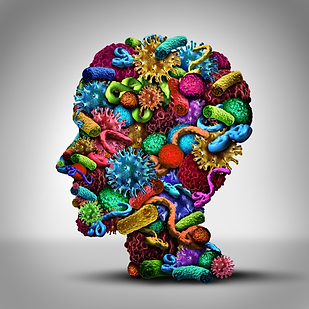 Dental CE Academy. Free Dental Continuing Education Courses for dentists, dental hygienists, and dental assistants. The Gut Brain Microbiota Axis: Its Role in Oral Health. Dental CE Academ is an AGD PACE approved provider