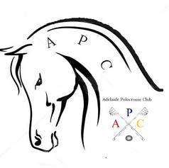 APC head.jpg