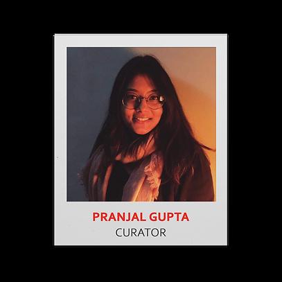 3. Pranjal Gupta CURATOR.png
