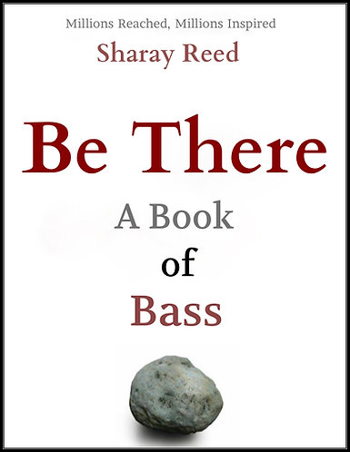 Be There (Audiobook)- A Book of Bass