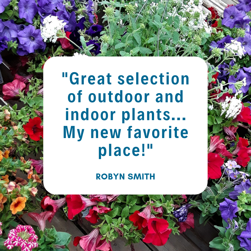 _Great selection of outdoor and indoor p