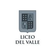 LiceoDelValle.jpg