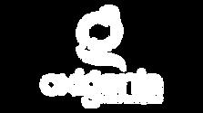 29 - OXIGENIA