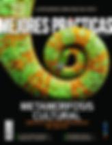 Revista Mejores Prácticas Corporativas 48 Metamorfosis Cultural