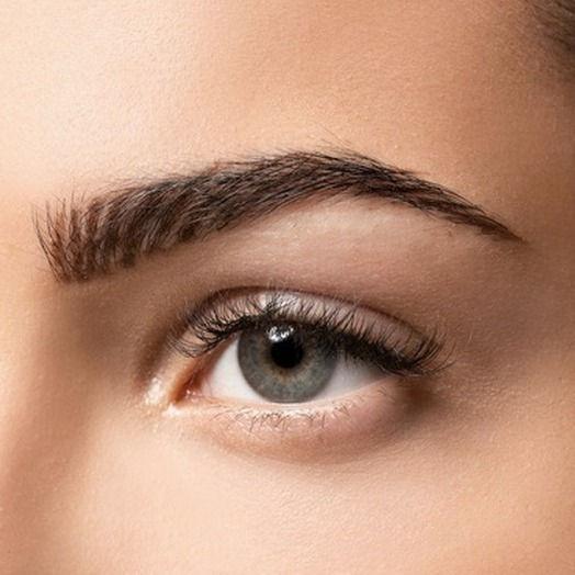 Eyebrow Wax & Lamination + Tint