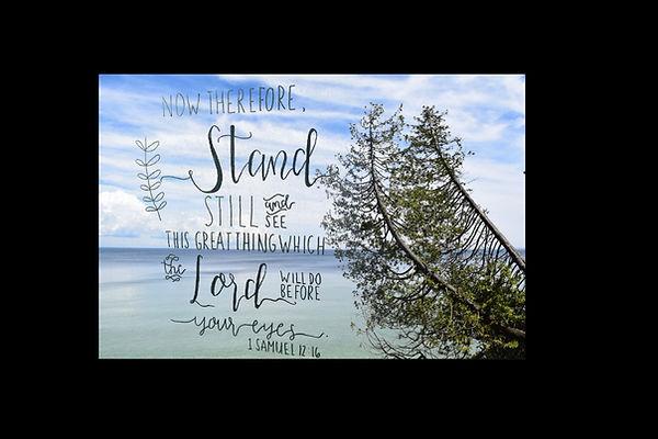 2016 scripture picture portfolio.jpg