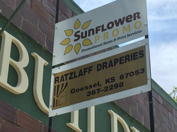Sunflower Promo