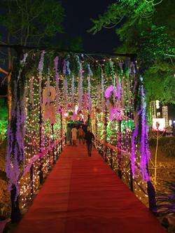 Wedding Entrance