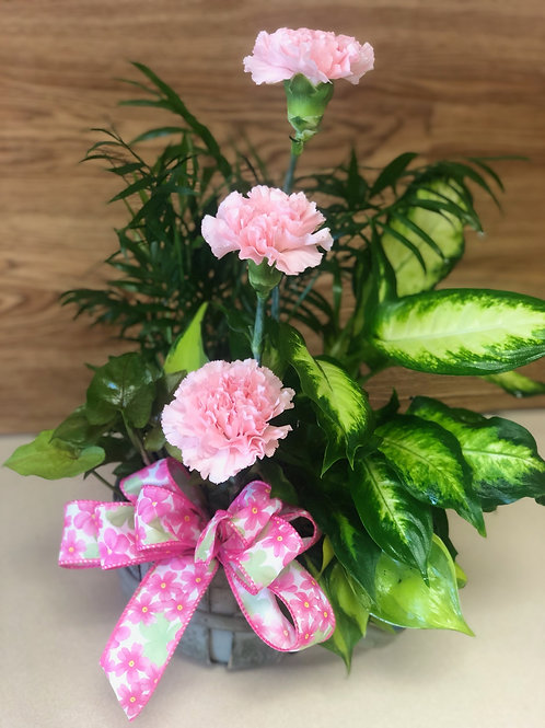 Planter/Dish Garden