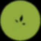 Leaf Filled Icon.png