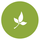 Leaf Filled Icon.png