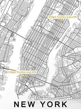 NY map leverage web.jpg