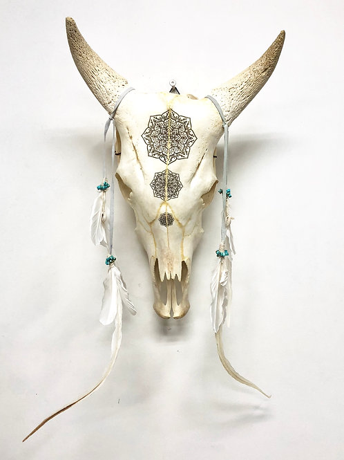Etched Bull Skull - mandala with turquoise beads