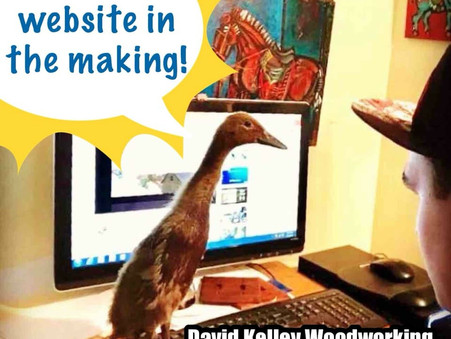 We're feeling just ducky about our new website construction!!!