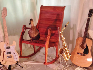 Space Duck our Spokesduck Models a Tavish Kelley Custom Electric Guitar and a David Kelley Rocker