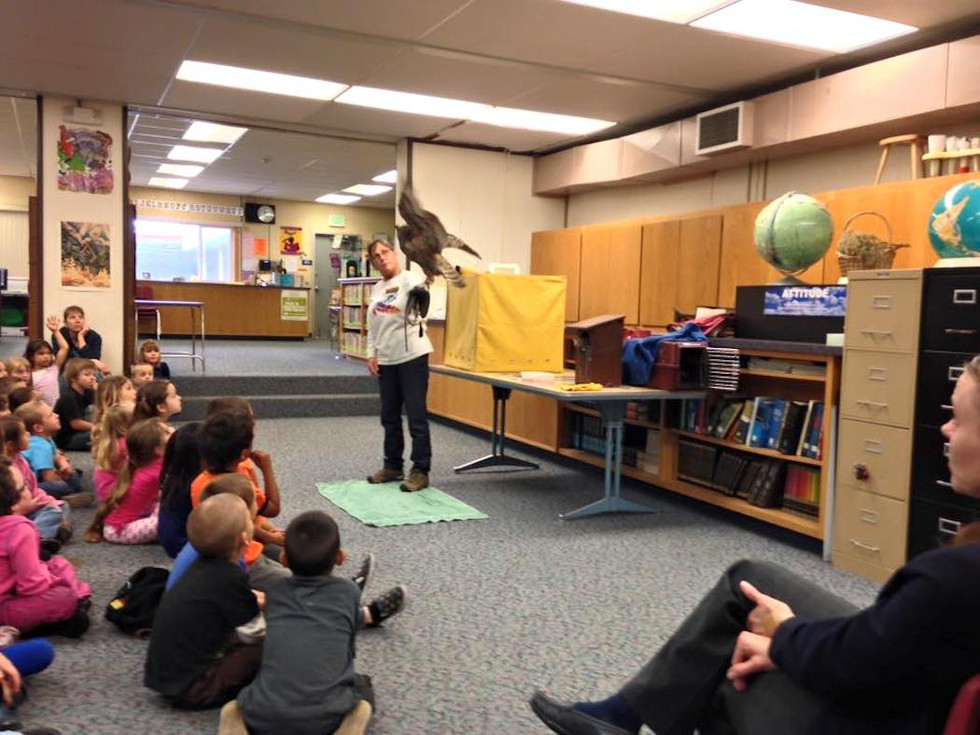 """Speaker & Event coordinator including wildlife, ecology, and natural history. (""""Al the Owl"""" with Linda Parkinson of the Humboldt Wildlife Care Center Raptor Education Team), Dow's Prairie Elementary School, CA."""