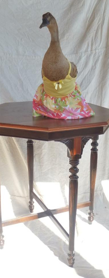 Salvaged Antique Table With Rebuilt Top