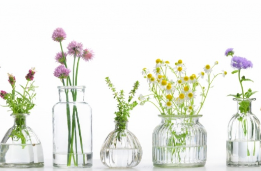 Flores de Bach en el tratamiento nutricional