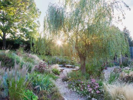 'Extraordinary' Sedlescombe School Sensory Garden Double Win at Society of Garden Designer's Awards!