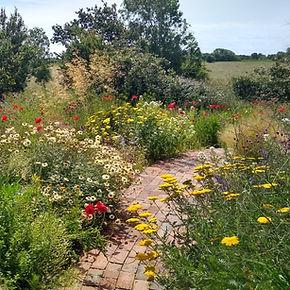 R_Front gravel garden 2021_07_05 (5).jpg
